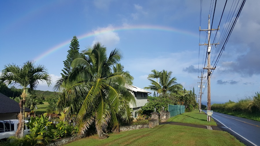 Regenbogen über einer Straße auf Maui mit Palmen